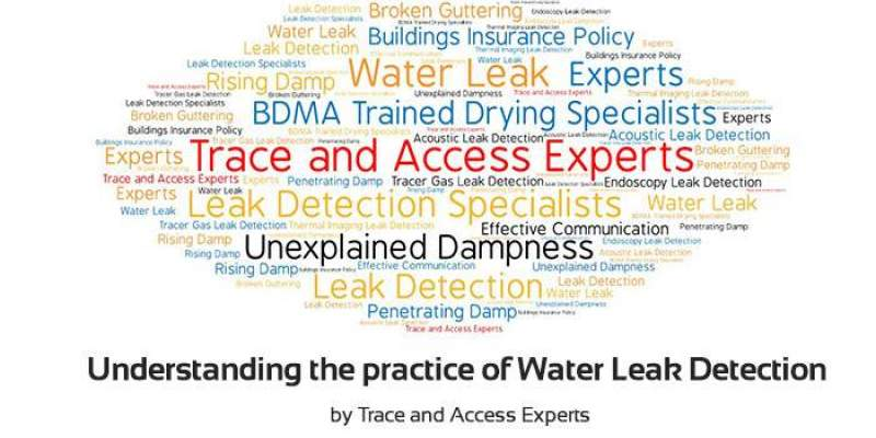 Understanding Water Leak Detection by Trace and Access Experts