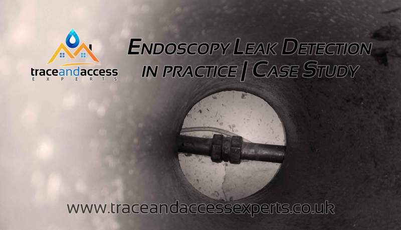 Endoscopy Leak Detection Case Study Banner by Trace and Access Experts